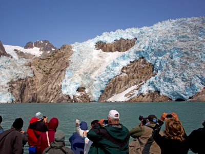 Glacier & Wildlife Cruise