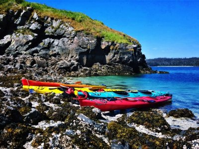 Across the Bay: Halibut Cove, Beluga, Nanwalek, Port Graham, Tyonek