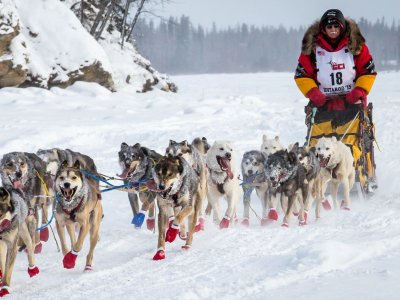 IdidaRide Sled Dog Tours, Inc.