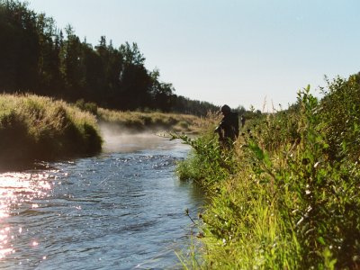 A Walk and Wade Fishing Adventure - Silverfin Guide Service