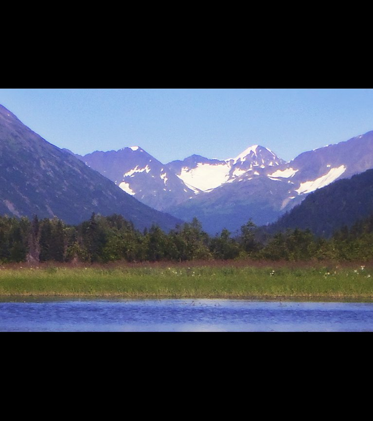 moose pass chat sites Information on moose pass, alaska including parks, maps, attractions, travel tips,  pictures and video.