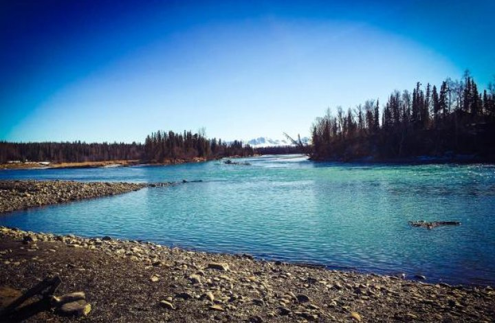 Spring Fever on the Kenai River