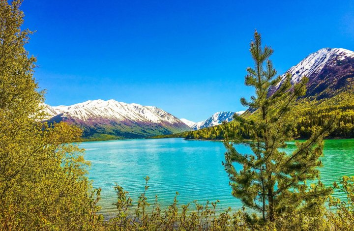 16 Majestic Moments From 2016 On The Kenai