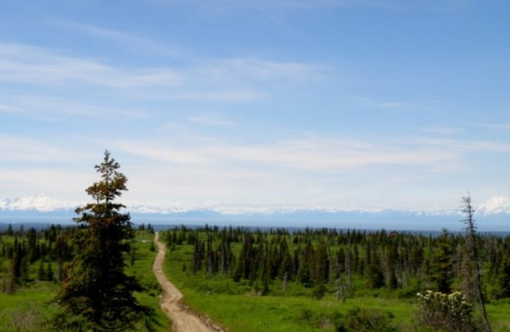 Hike, ATV, Sightsee in the Caribou Hills